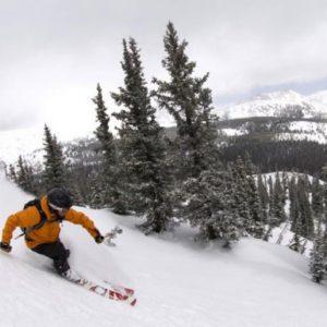 Monarch-skier